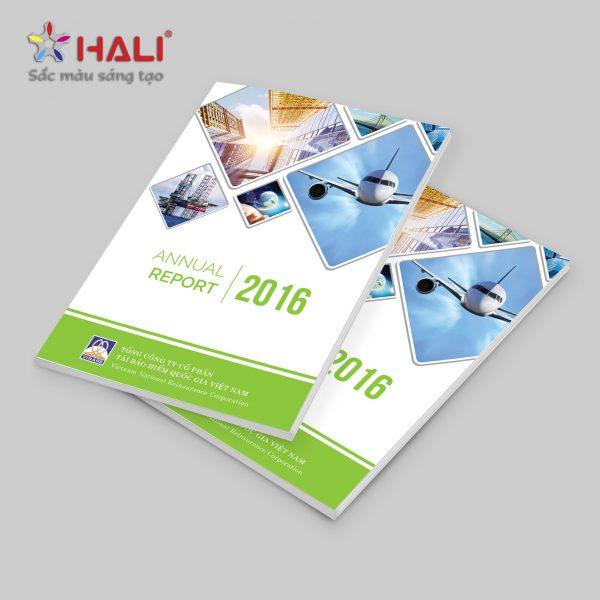 Báo cáo thường niên Vinare 2016