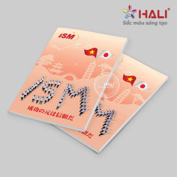 Brochure ISM