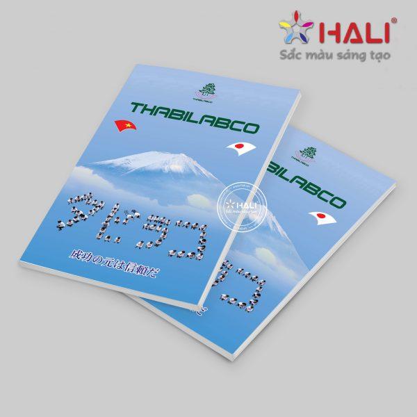 Brochure Thabilabco