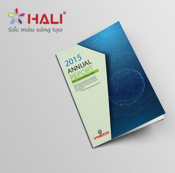 Báo cáo thường niên VNECO 2015
