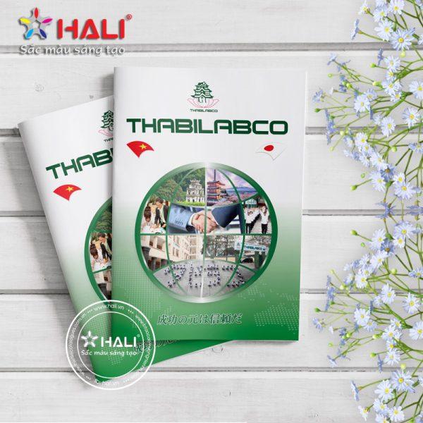 Catalogue Thabilabco 2018