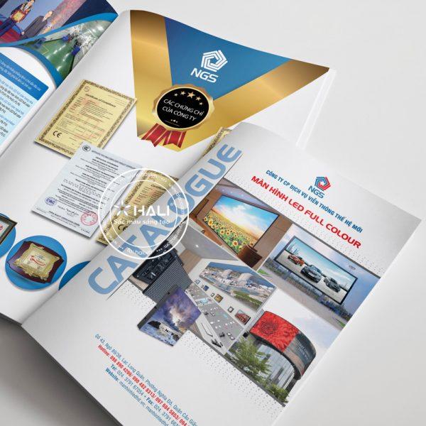 Thiết kế catalogue giới thiệu sản phẩm màn hình LED